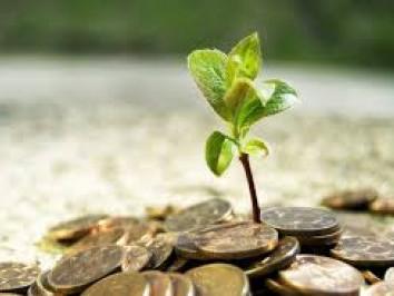 Які інвестиції «зайшли» у минулому році на Волинь