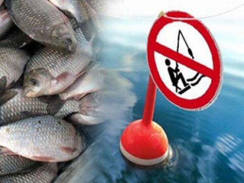 Де на Волині не можна ловити рибу