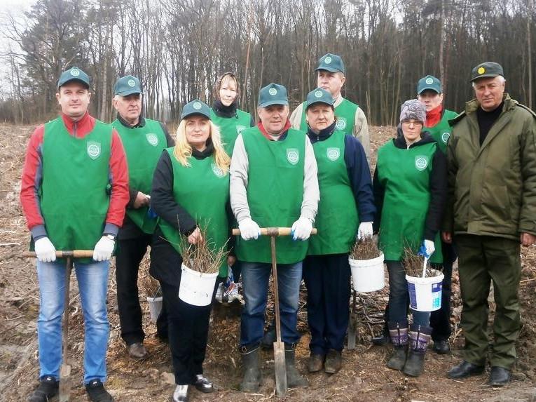 Представники влади та громади Іваничівщини засадили гектар лісу