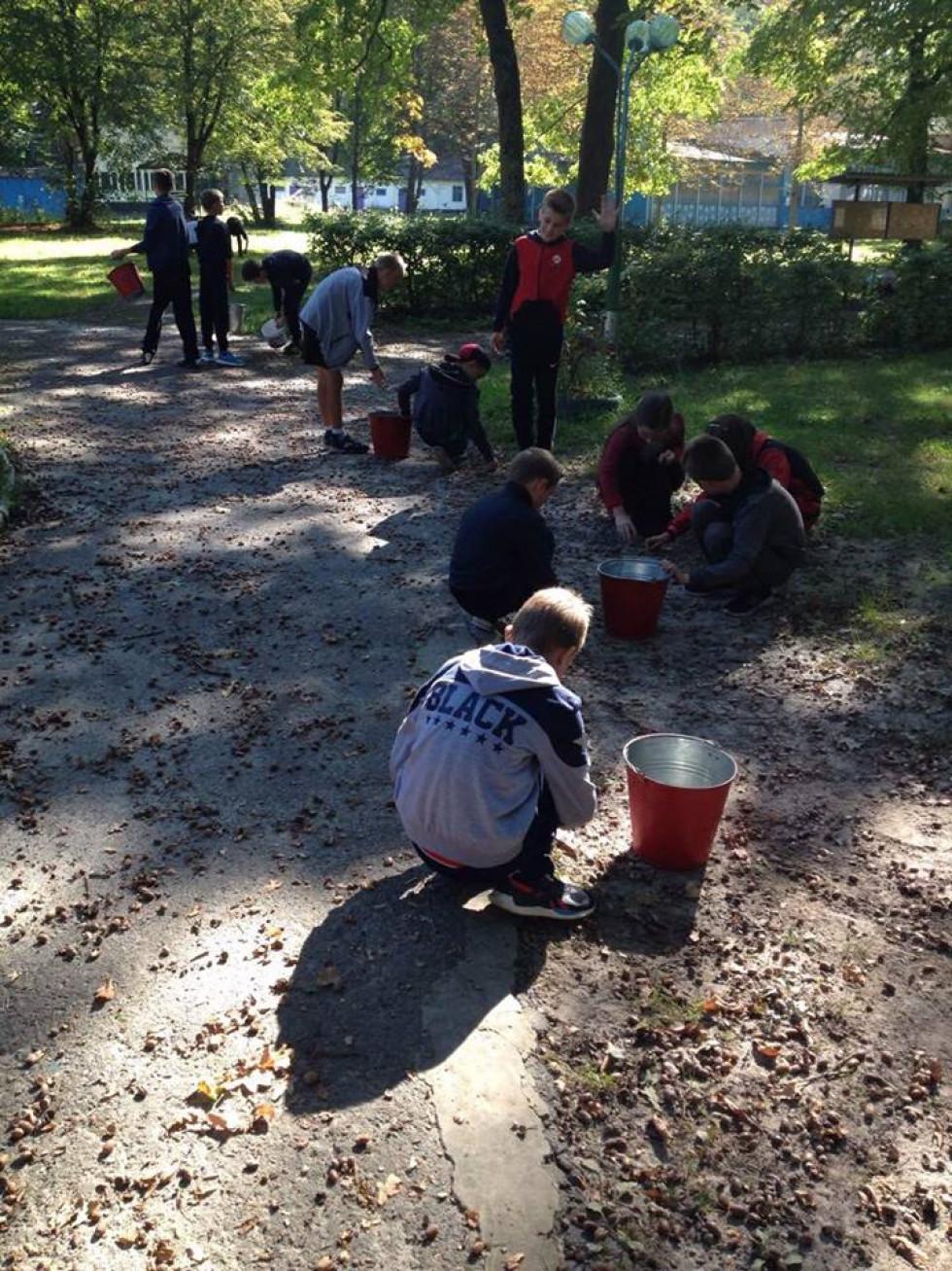 Учні ліцею із сумлінням та ентузіазмом долучились до збирання жолудів на території лісництва у санаторії «Барвінок»
