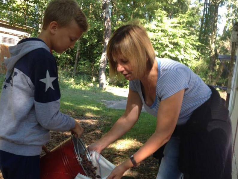 На Іваничівщині школярі допомагають лісівникам збирати жолуді